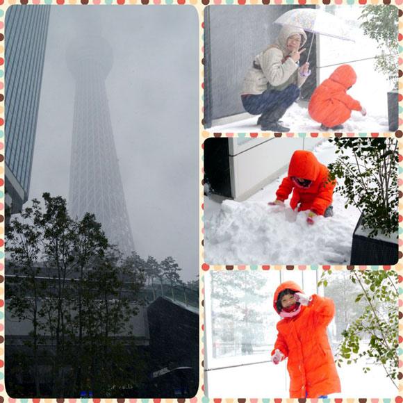 0208 東京遇大雪02.JPG