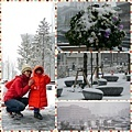 0208 東京遇大雪04.JPG