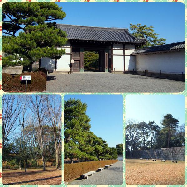 0103 二条城庭園07.JPG
