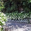 0614 下田公園09.JPG