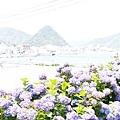 0614 下田公園08.JPG