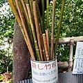 0614 下田公園19.JPG