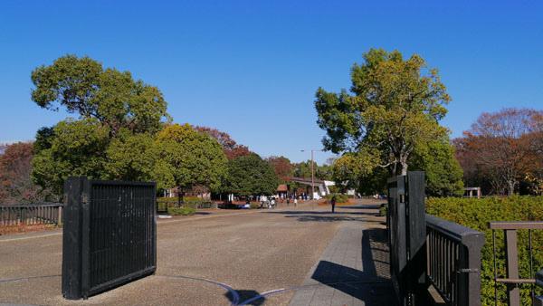 1127 昭和記念公園01.JPG