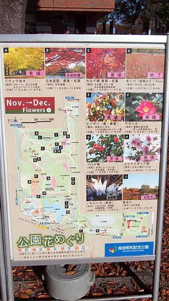1127 昭和記念公園04.JPG