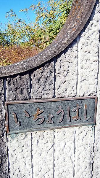 1127 昭和記念公園23.JPG