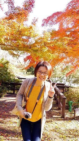 1127 昭和記念公園34.JPG