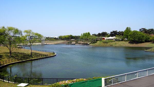 0502 茨城日立海濱公園13.JPG