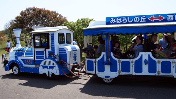 0502 茨城日立海濱公園14.JPG