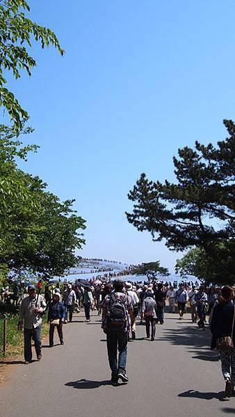 0502 茨城日立海濱公園16.JPG