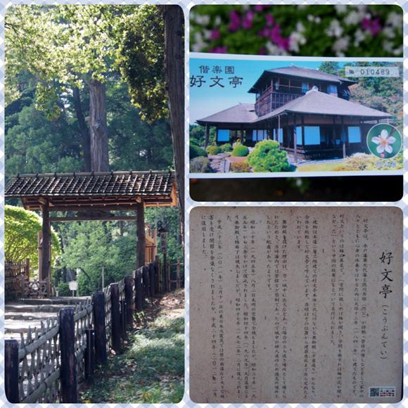 0502 水戶偕樂園11.JPG