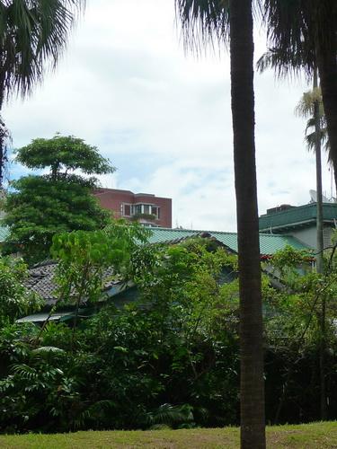 0823-植物園01.jpg
