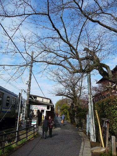 0214-北鎌倉円覺寺02.JPG