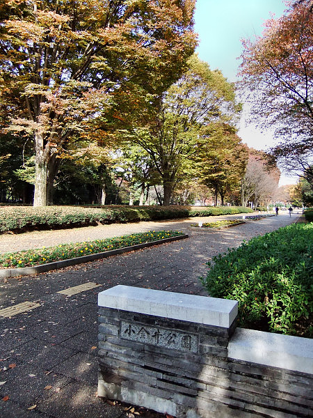 1120-小金井公園01.JPG