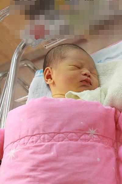 出生第二天-ma