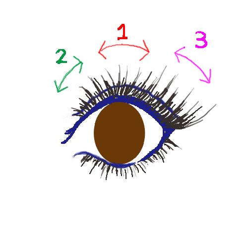 眼睛分區圖.jpg