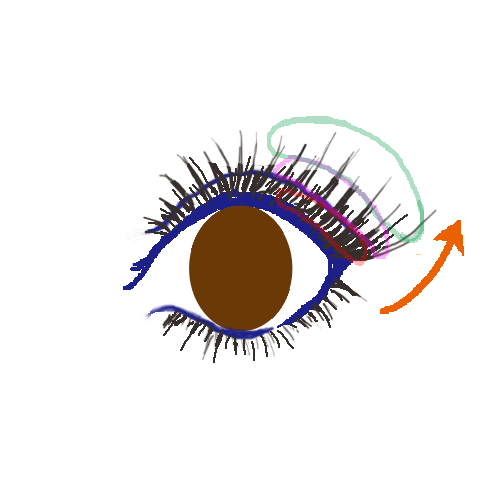 眼睛1拷貝.jpg