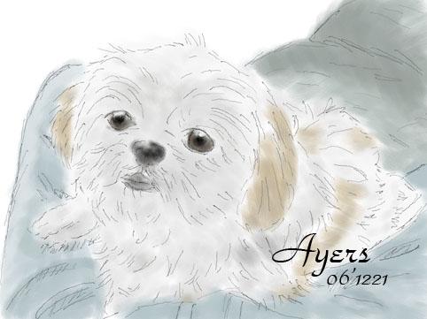 Ayers_painter_09.jpg