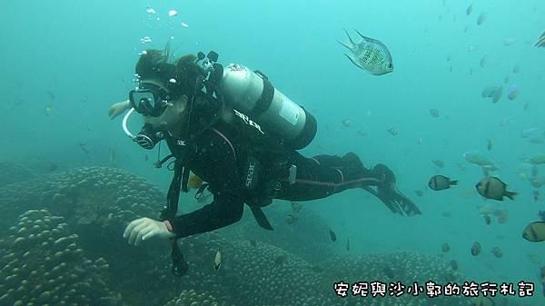 潛水10.JPG