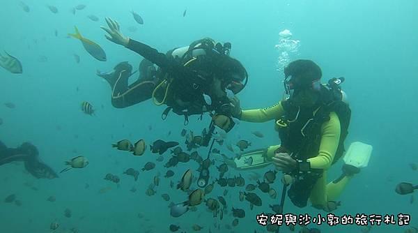 潛水09.JPG