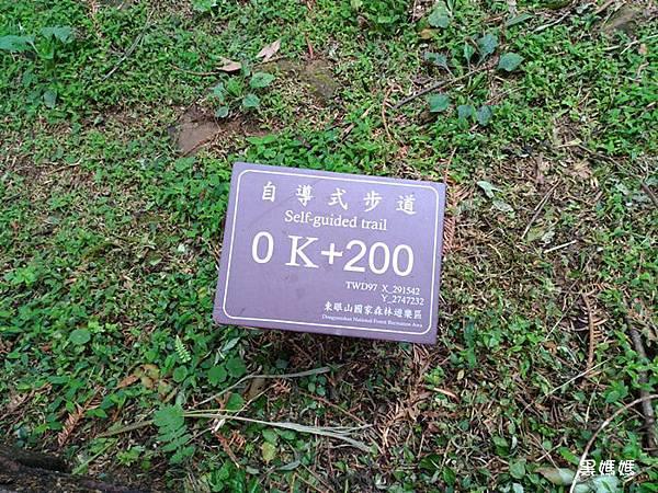 東眼山 (4).jpg