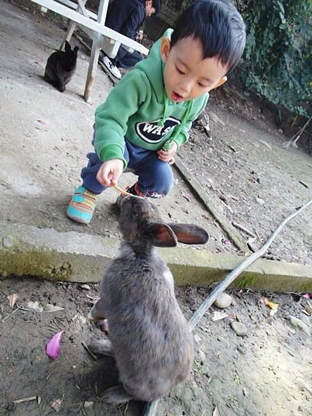 2014/12月~2Y兔樂園