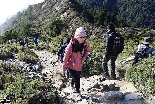合歡山北峰14.jpg