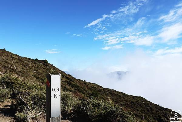 合歡山北峰17.jpg
