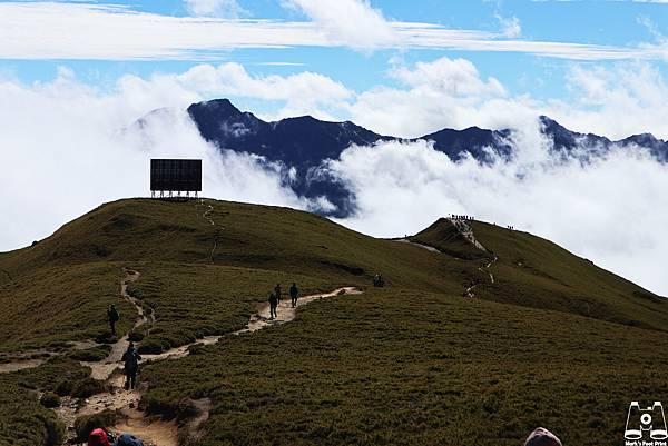 合歡山北峰30.jpg