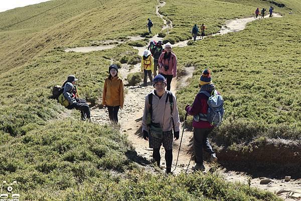 合歡山北峰29.jpg