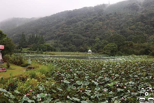 苗栗向天湖4.jpg