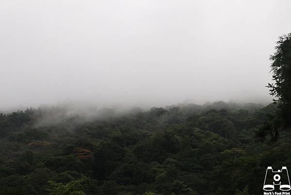 苗栗向天湖12.jpg