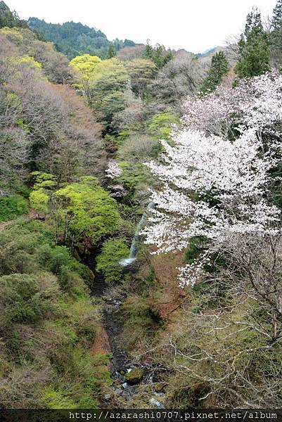 渡良瀨溪谷  散策