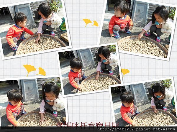 DSCN9309_meitu_1.jpg