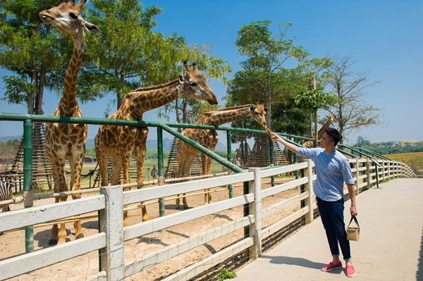WMW_4655Singha Park.jpg