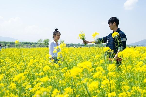 河中島油菜花節WMW_1612.jpg