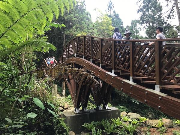 溪頭自然教育園區提供.jpeg