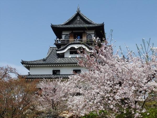 犬山城1.jpg