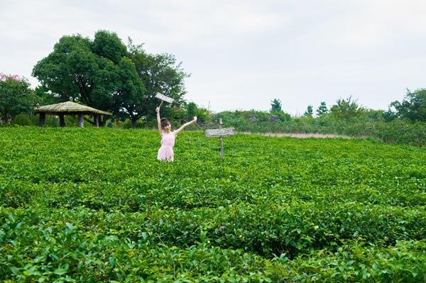 WMW_0409Nori 梅公園.jpg
