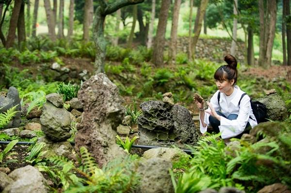 WMW_9218漢拏樹木園.jpg