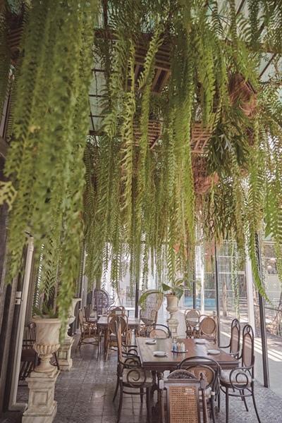 _WOW8223The Tea House.jpg
