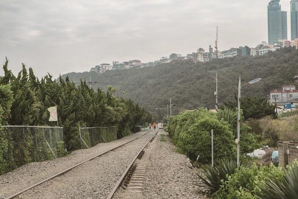 海景鐵道1.jpg