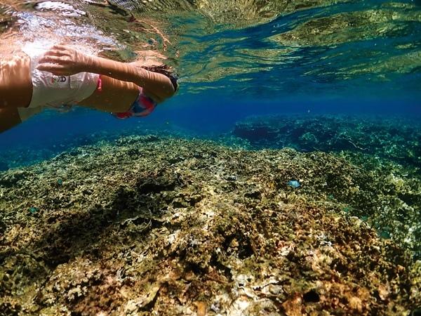 Eco Tourism5.jpg