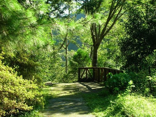 八仙山-森林浴步道.jpg