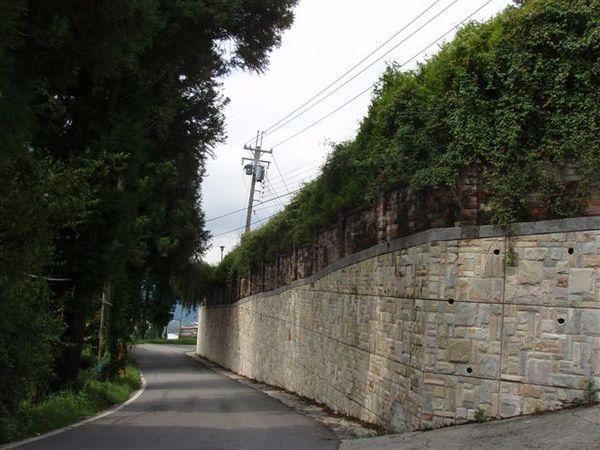國小的圍牆邊的小路.JPG