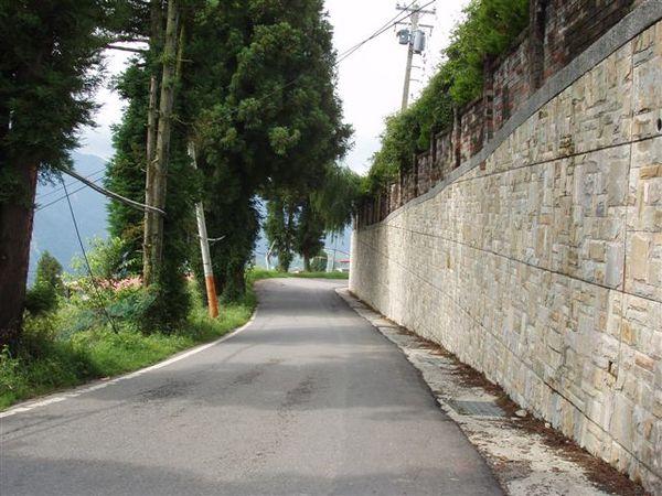 小路直走大約20分鐘 就是福壽山農場 .JPG