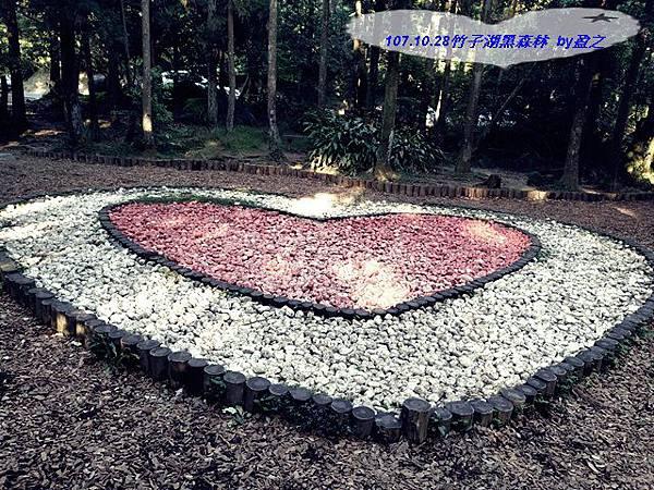 107.10.28竹子湖黑森林  by盈之1.jpg