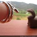 響尾蛇戒3