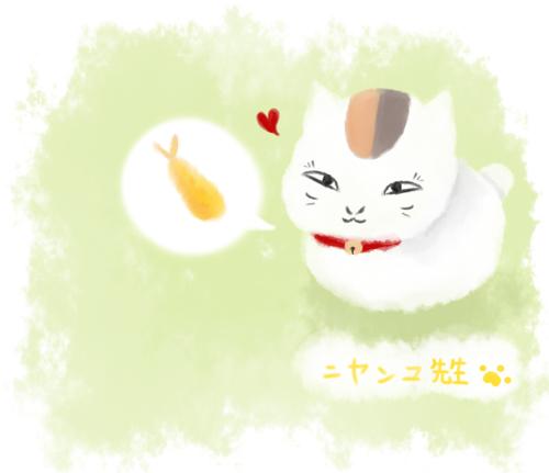 貓咪老師.png