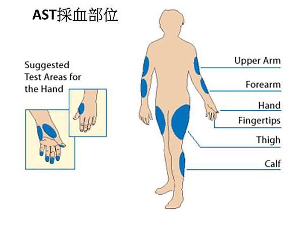 AST採血部位