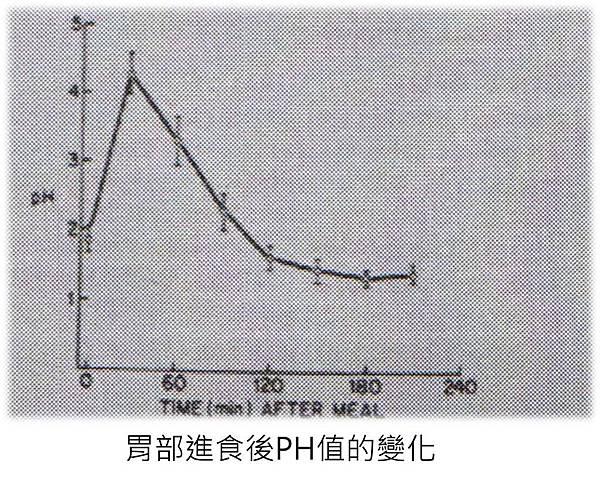 進食後胃部PH值變化